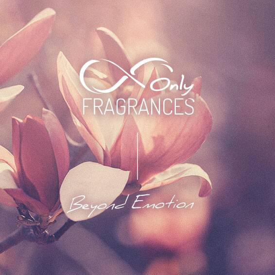 Only Fragrances Only Fragrances